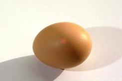 eggs-effect-car-paint-800x800